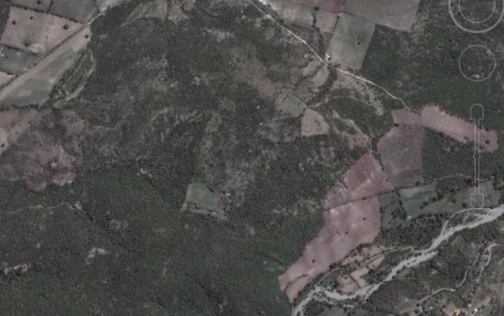 Foto de terreno habitacional en venta en  , atlacholoaya, xochitepec, morelos, 1207783 No. 01