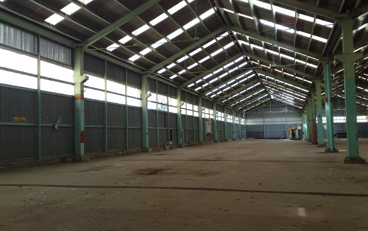 Foto de nave industrial en venta en  , atlacomulco, atlacomulco, méxico, 1045809 No. 08