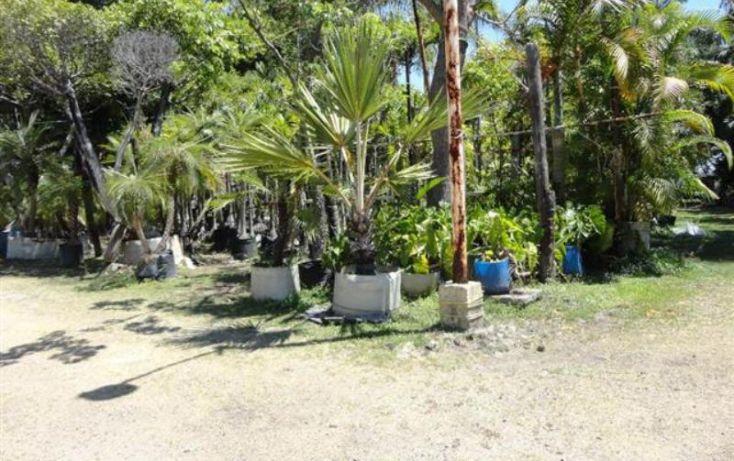 Foto de terreno habitacional en venta en , atlacomulco, jiutepec, morelos, 2000242 no 05
