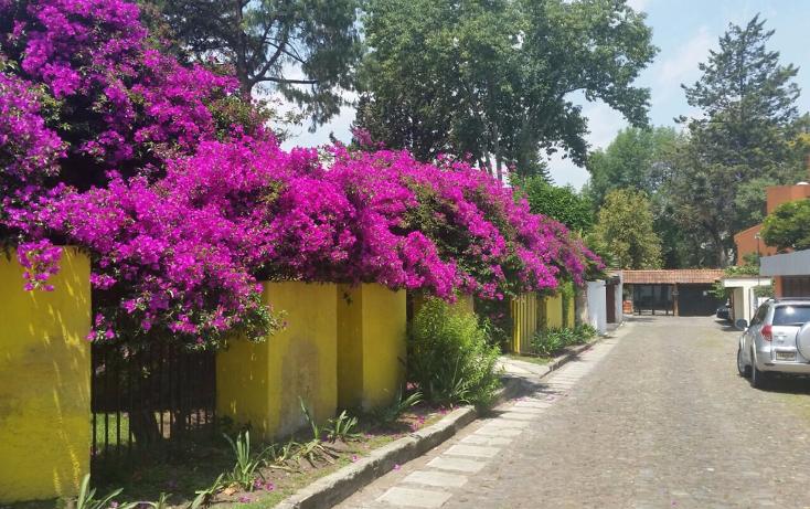 Foto de casa en venta en  , atlamaya, álvaro obregón, distrito federal, 1040387 No. 06