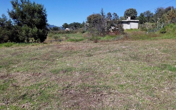 Foto de terreno habitacional en venta en  , atlangatepec, atlangatepec, tlaxcala, 1619360 No. 02