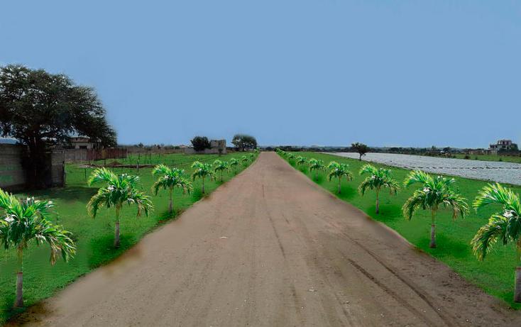 Foto de terreno habitacional en venta en  , atlatlahucan, atlatlahucan, morelos, 1045201 No. 03
