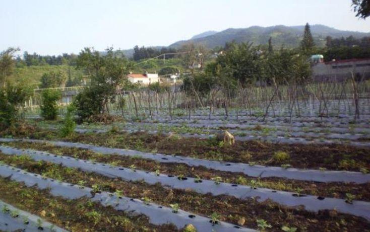 Foto de terreno comercial en venta en, atlatlahucan, atlatlahucan, morelos, 1783814 no 01