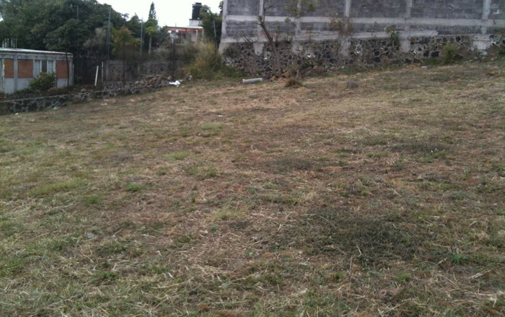 Foto de terreno habitacional en venta en  , atlatlahucan, atlatlahucan, morelos, 2002988 No. 02