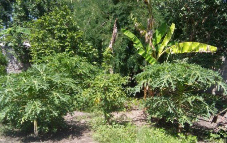 Foto de casa en venta en, atlihuayan, yautepec, morelos, 1926735 no 04