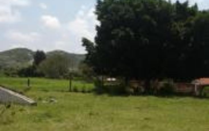 Foto de terreno habitacional en venta en  , atlixco centro, atlixco, puebla, 1245635 No. 05