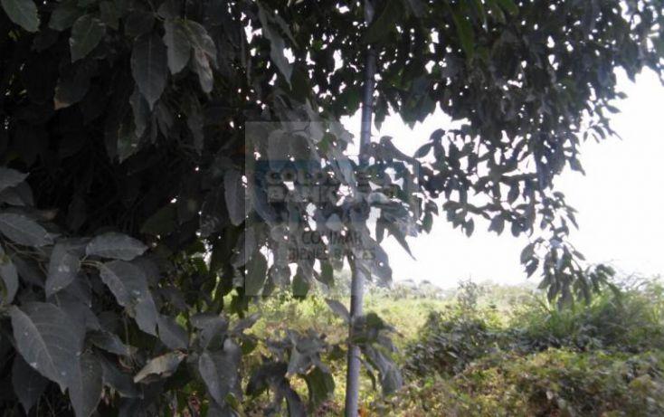 Foto de terreno habitacional en venta en atun 338, villa océano, manzanillo, colima, 1652499 no 08