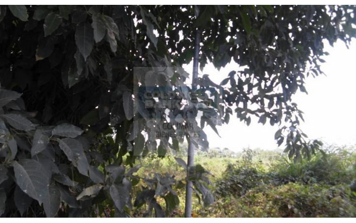 Foto de terreno comercial en venta en  , villa océano, manzanillo, colima, 1840940 No. 08