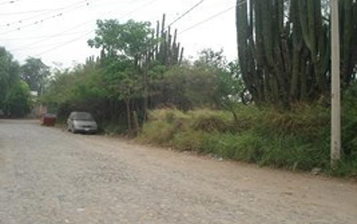 Foto de terreno habitacional en venta en  , autl?n de navarro centro, autl?n de navarro, jalisco, 2045601 No. 06