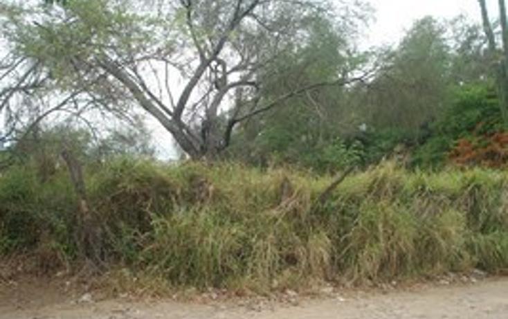 Foto de terreno habitacional en venta en  , autl?n de navarro centro, autl?n de navarro, jalisco, 2045601 No. 07