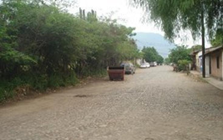 Foto de terreno habitacional en venta en  , autl?n de navarro centro, autl?n de navarro, jalisco, 2045601 No. 08