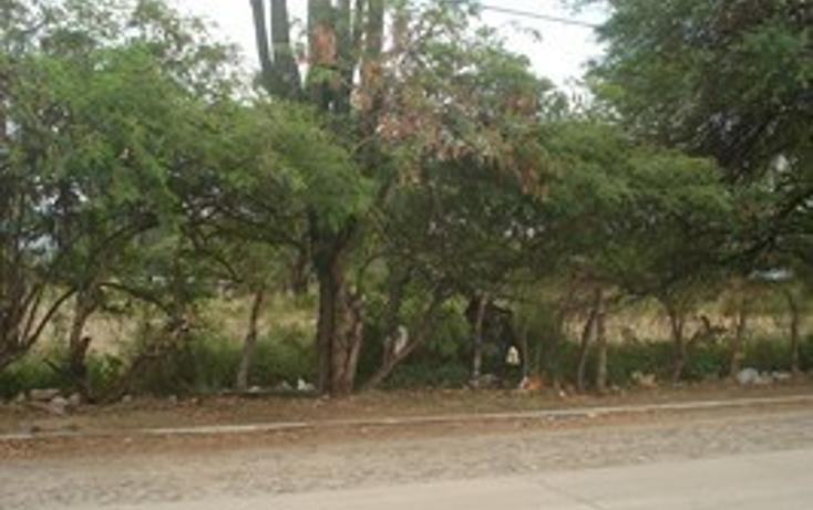 Foto de terreno habitacional en venta en  , autl?n de navarro centro, autl?n de navarro, jalisco, 2045601 No. 23