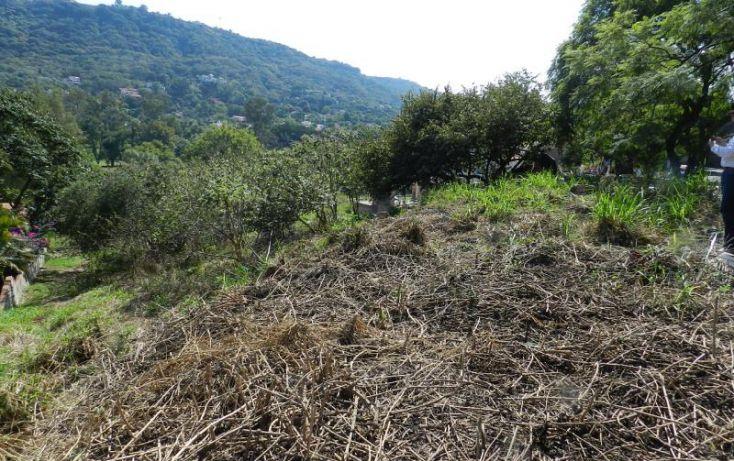 Foto de terreno habitacional en venta en av bosque de san isidro 12, bosques de san isidro, zapopan, jalisco, 1473815 no 03