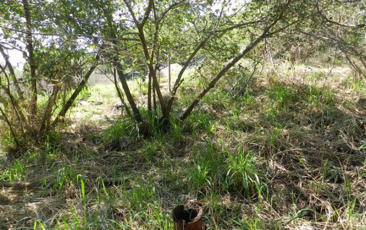 Foto de terreno habitacional en venta en av bosque de san isidro 12, bosques de san isidro, zapopan, jalisco, 1473815 no 06