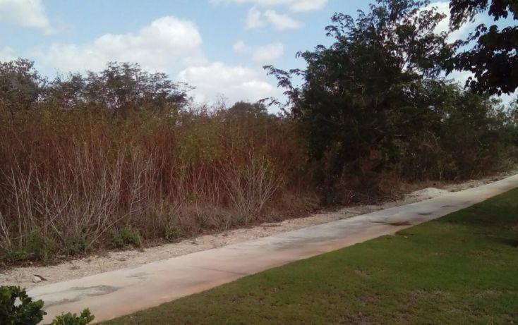 Foto de terreno habitacional en venta en av del jaguar 69, alcalá martín, mérida, yucatán, 1719598 no 06