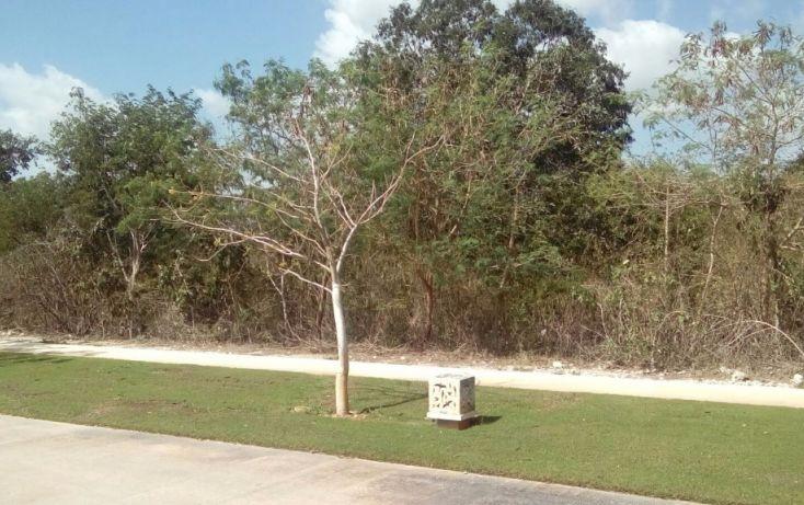 Foto de terreno habitacional en venta en av del jaguar 69, alcalá martín, mérida, yucatán, 1719598 no 10