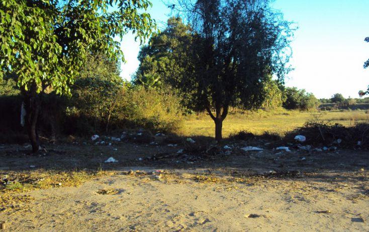 Foto de terreno habitacional en venta en av hidalgo, entre morelos y guerrero sn, higueras de zaragoza centro, ahome, sinaloa, 1710134 no 06