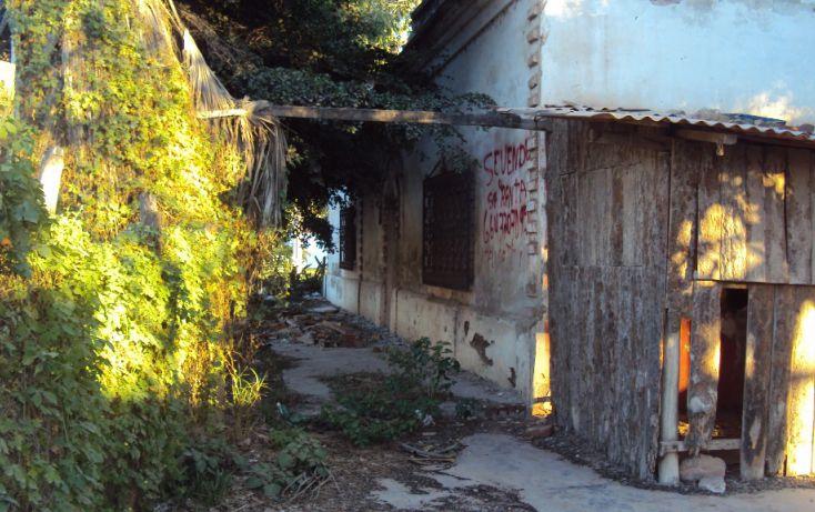 Foto de terreno habitacional en venta en av hidalgo, entre morelos y guerrero sn, higueras de zaragoza centro, ahome, sinaloa, 1710134 no 07