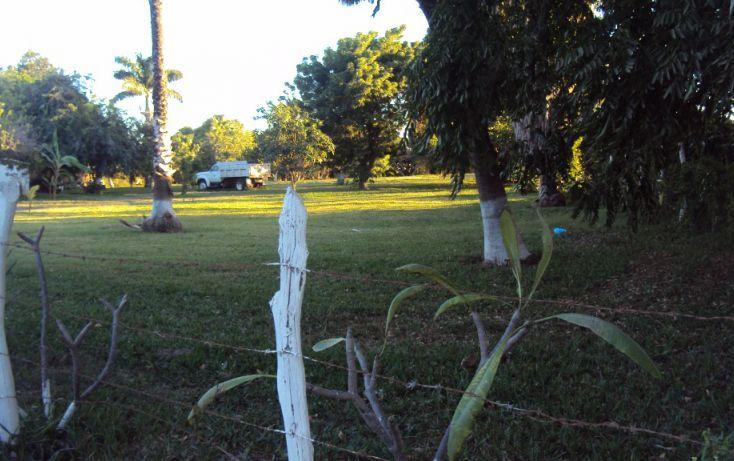 Foto de terreno habitacional en venta en av hidalgo, entre morelos y guerrero sn, higueras de zaragoza centro, ahome, sinaloa, 1710134 no 10