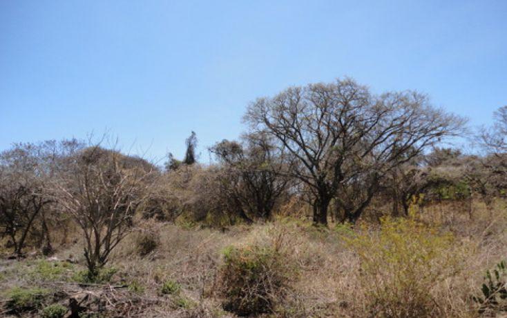 Foto de terreno habitacional en venta en av los galapagos sn, los galápagos, chapala, jalisco, 1695332 no 03