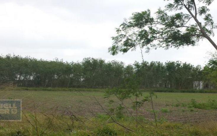 Foto de terreno habitacional en renta en av los presidentes sn, los presidentes, matamoros, tamaulipas, 1729122 no 05