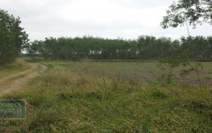 Foto de terreno habitacional en renta en av los presidentes sn, los presidentes, matamoros, tamaulipas, 1729122 no 07