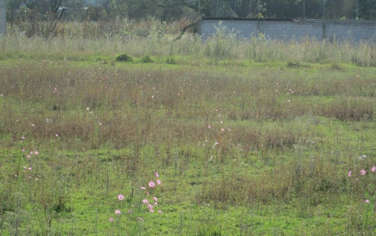 Foto de terreno habitacional en venta en av moctezuma 0, san dionisio yauhquemehcan, yauhquemehcan, tlaxcala, 1714016 no 07