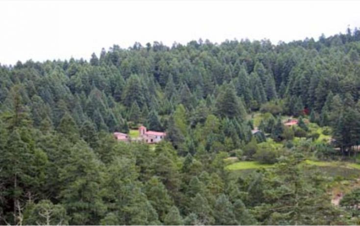 Foto de terreno habitacional en venta en av principal, del viento, mineral del monte, hidalgo, 1456473 no 01
