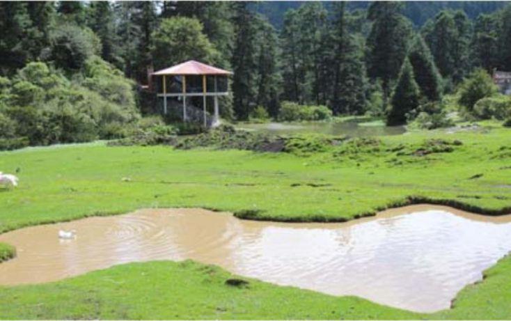 Foto de terreno habitacional en venta en av principal, del viento, mineral del monte, hidalgo, 1456473 no 22