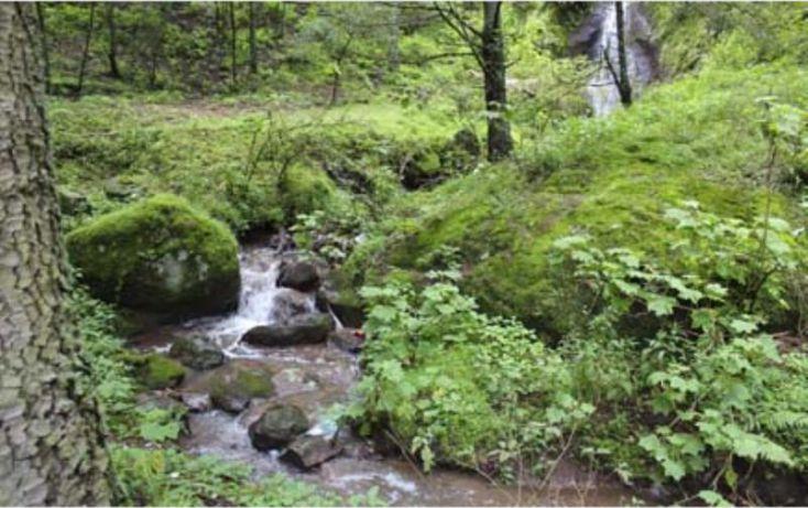 Foto de terreno habitacional en venta en av principal, del viento, mineral del monte, hidalgo, 1456473 no 23