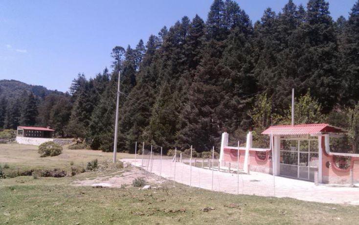 Foto de terreno habitacional en venta en av principal, del viento, mineral del monte, hidalgo, 1456473 no 33