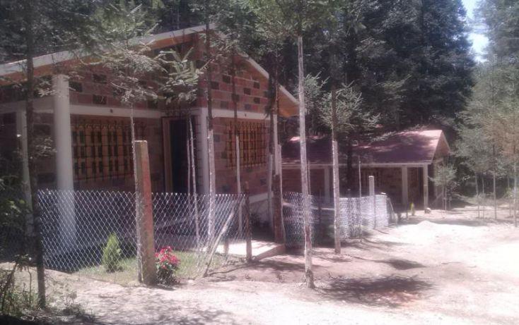 Foto de terreno habitacional en venta en av principal, del viento, mineral del monte, hidalgo, 1456473 no 50