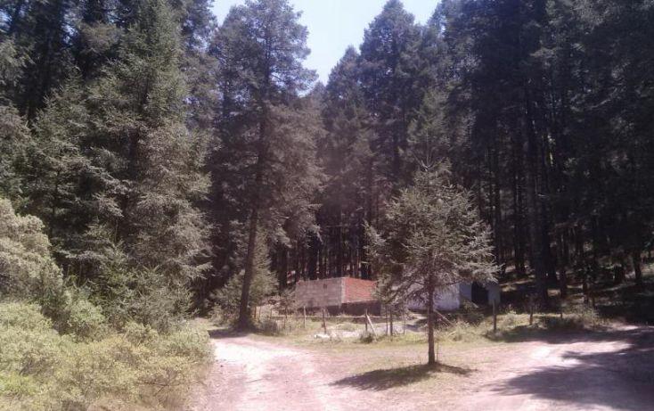 Foto de terreno habitacional en venta en av principal, del viento, mineral del monte, hidalgo, 1456473 no 59