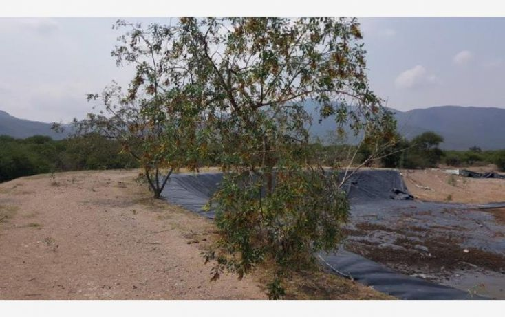 Foto de terreno habitacional en venta en av tequisquiapan 1, bordo blanco, tequisquiapan, querétaro, 1984494 no 06