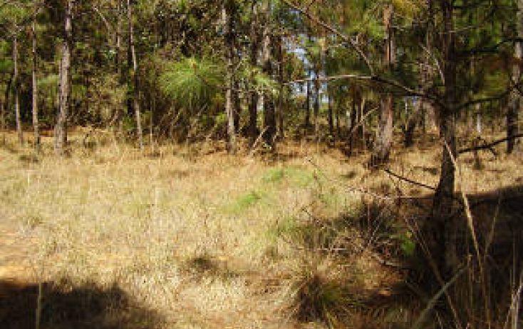 Foto de terreno habitacional en venta en avándaro sn, avándaro, valle de bravo, estado de méxico, 1697922 no 02