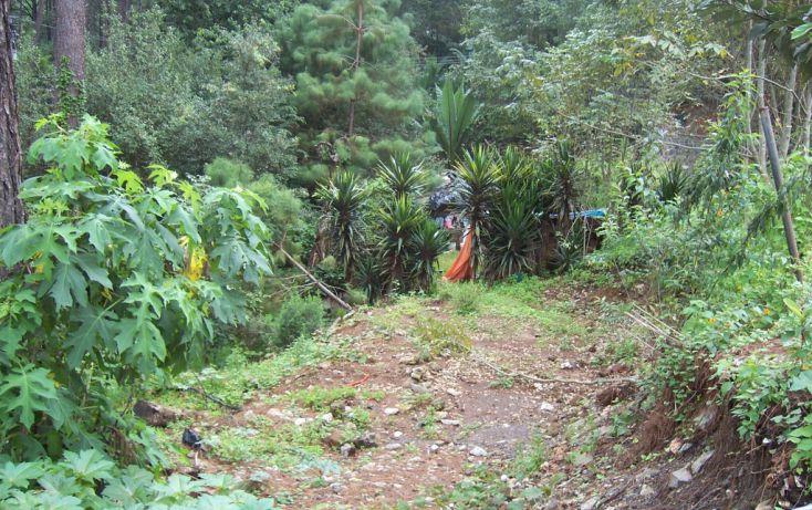 Foto de terreno habitacional en venta en avándaro sn, avándaro, valle de bravo, estado de méxico, 1697968 no 02