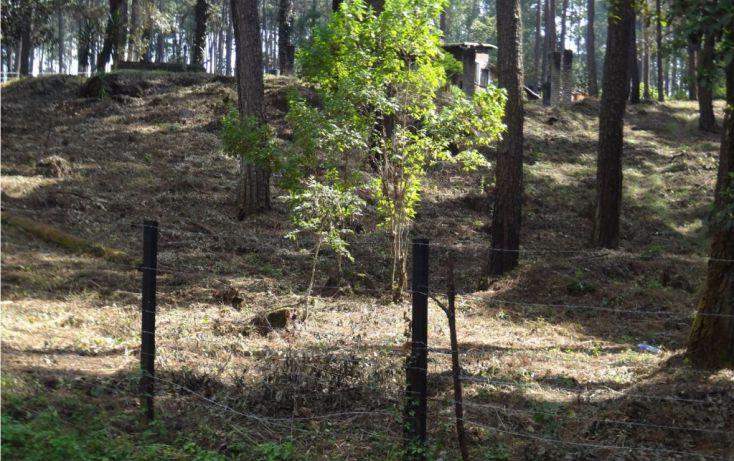 Foto de terreno habitacional en venta en avándaro sn, avándaro, valle de bravo, estado de méxico, 1697996 no 06