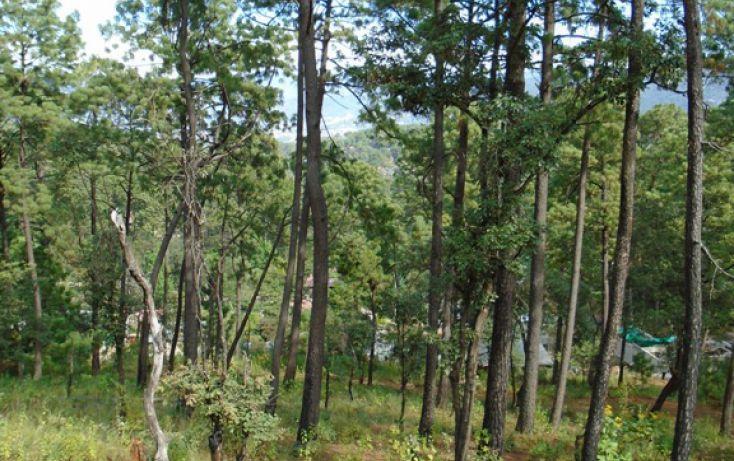 Foto de terreno habitacional en venta en avándaro sn, avándaro, valle de bravo, estado de méxico, 1698036 no 02