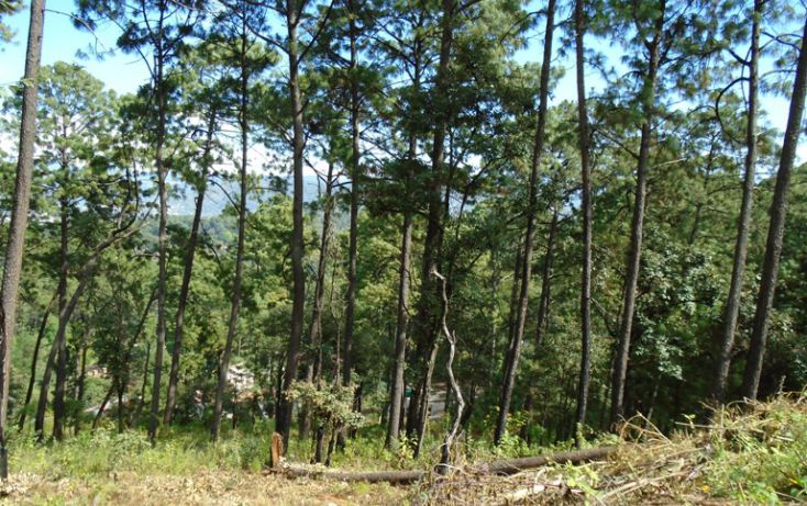 Foto de terreno habitacional en venta en avándaro sn, avándaro, valle de bravo, estado de méxico, 1698036 no 04