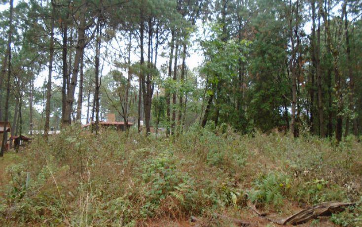 Foto de terreno habitacional en venta en avándaro sn, avándaro, valle de bravo, estado de méxico, 1698062 no 01