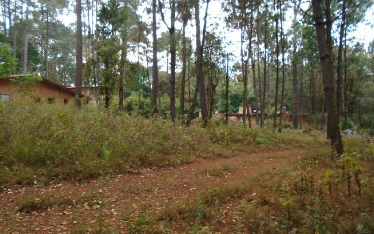 Foto de terreno habitacional en venta en avándaro sn, avándaro, valle de bravo, estado de méxico, 1698062 no 02
