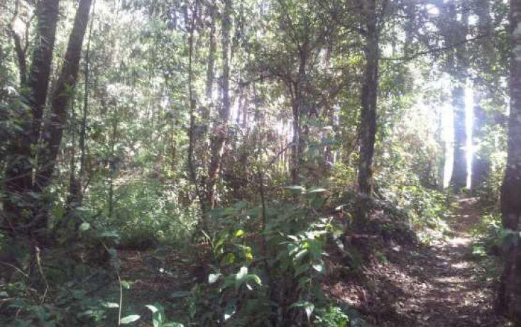 Foto de terreno habitacional en venta en avándaro sn, avándaro, valle de bravo, estado de méxico, 1698244 no 01