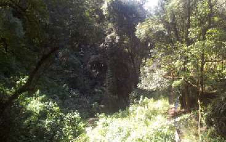 Foto de terreno habitacional en venta en avándaro sn, avándaro, valle de bravo, estado de méxico, 1698244 no 05