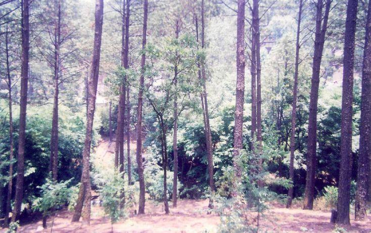 Foto de terreno habitacional en venta en, avándaro, valle de bravo, estado de méxico, 1135429 no 02