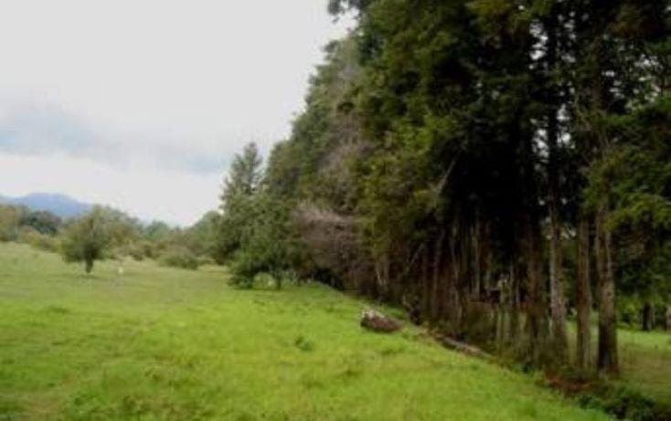 Foto de rancho en venta en, avándaro, valle de bravo, estado de méxico, 1425939 no 09