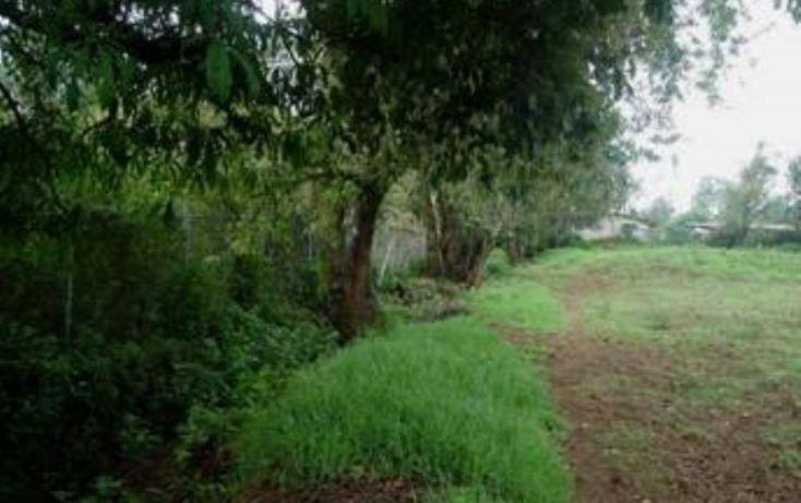 Foto de rancho en venta en, avándaro, valle de bravo, estado de méxico, 1425939 no 11