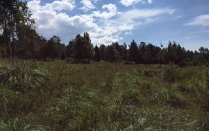 Foto de terreno habitacional en venta en, avándaro, valle de bravo, estado de méxico, 1509933 no 05