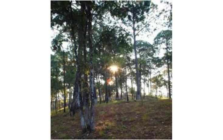 Foto de terreno habitacional en venta en, avándaro, valle de bravo, estado de méxico, 529637 no 03