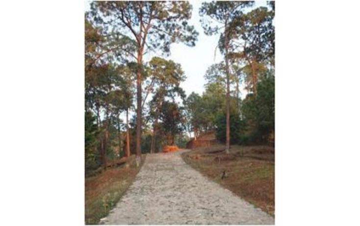 Foto de terreno habitacional en venta en, avándaro, valle de bravo, estado de méxico, 529637 no 05