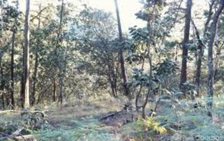 Foto de terreno habitacional en venta en  , av?ndaro, valle de bravo, m?xico, 1086787 No. 08